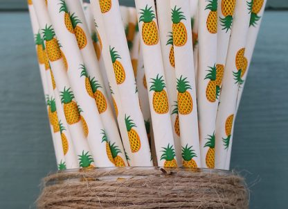 eco party supplies plastic free party paper straws