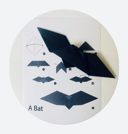 bat themed party