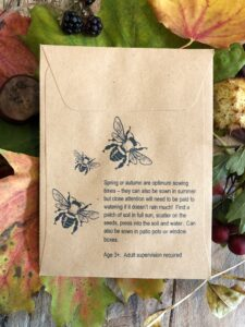 wildflower seeds for kids